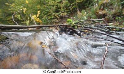eau, clair, rivière, jeûne