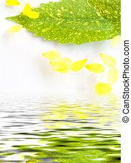 eau, composition