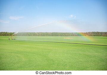 eau, maïs, installation, arroseuse, champ