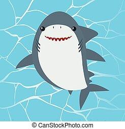 eau, mignon, requin, fond