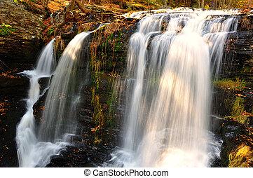 eau, milieu, automne, delaware, trouée