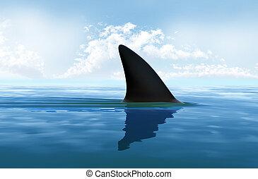 eau, nageoire requin, au-dessus
