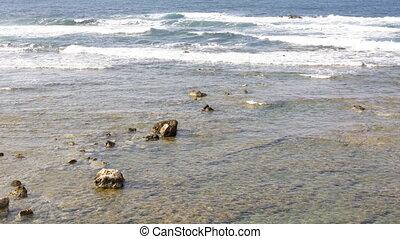 eau, peu profond, rochers