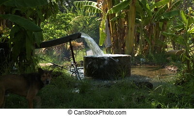 eau, remplissage, tuyau, puits