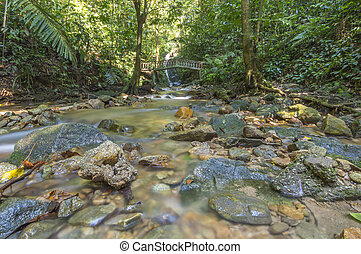 eau, ruisseau