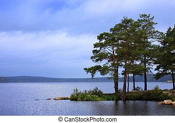 eau, sur, paysage, arbres pin
