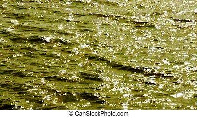 eau, surface., étincelant