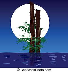 eau, vecteur, arbre, illustration