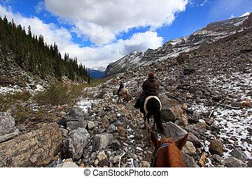 ebene, sechs, pferderücken, gletscher, alberta, reiten