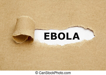 Ebola Torn Paper