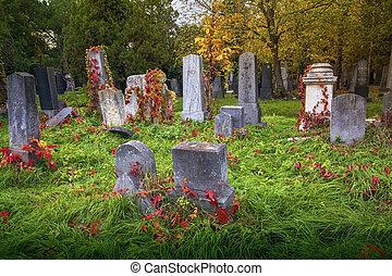ebreo, vecchio, cimitero
