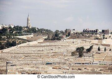 ebreo, vecchio, gerusalemme, cimitero