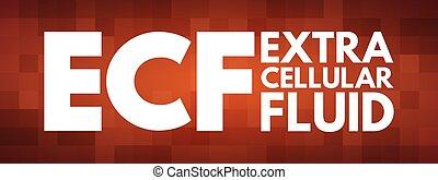 ECF - Extracellular fluid acronym concept