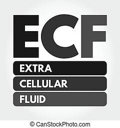 ECF - Extracellular fluid acronym, medical concept