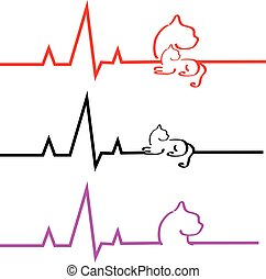 ECG with cat on white background