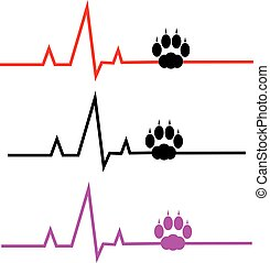 ECG with cat paw on white background