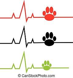ECG with dog paw on white background