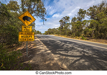 Echidna road sign