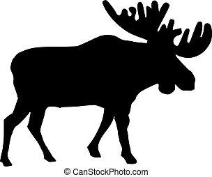 echte, eland, silhouette