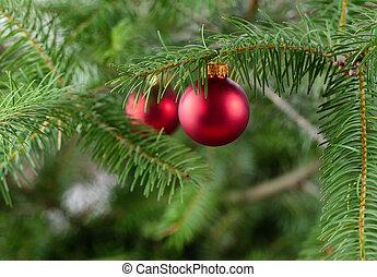 echte, kerstboom, met, hangend, gloeiend, rood, ornament