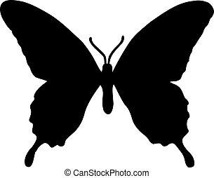 echte , papillon, silhouette