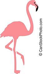 echte , rosafarbener flamingo