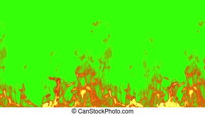 echte, vuur, vlammen, branden, beweging, op, chroma, klee, groene, scherm, achtergrond, lus, seamless, gereed