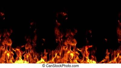 echte, vuur, vlammen, branden, beweging, op, zwarte achtergrond, lus, seamless, gereed