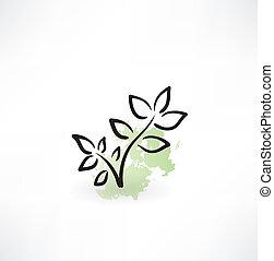 eco, ícone