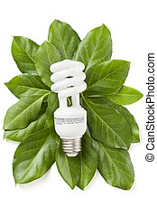 eco, אנרגיה, מושג, ירוק