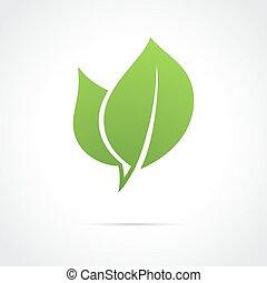 eco, アイコン, 緑の葉