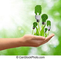 eco, エネルギー, 電球, 中に, 手