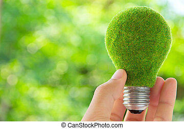 eco, ライト, 概念, 電球