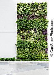 eco, 壁, 緑, 味方