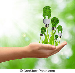eco, 手, 燈泡, 能量