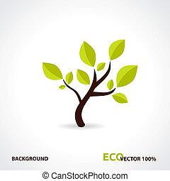 eco, 技術