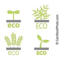 eco, 植物