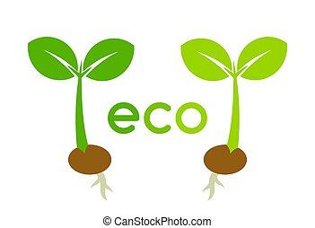 eco, 植物, 2, icons., 実生植物