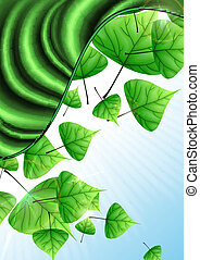 eco, 緑, leaves., 背景