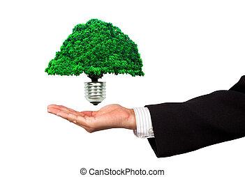 eco, 能量