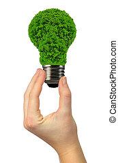 eco, 電球, エネルギー