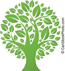 eco, albero