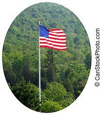 eco american flag