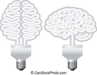 eco, ampoule, vecteur, cerveau