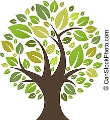 eco, arbre
