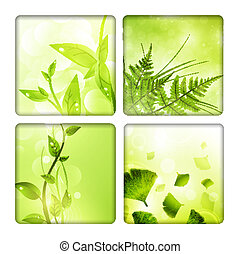 Eco background collection with green leaves