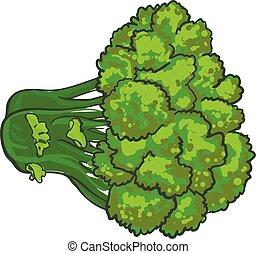 Eco broccoli icon, cartoon style