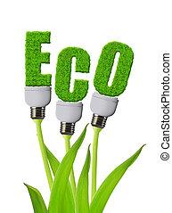 Eco bulb growing on plant