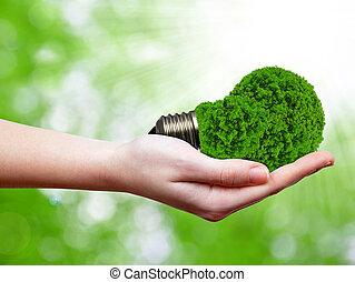 eco, bulbo, energia, mão