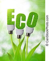 eco, bulbo, plant., crescente